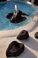 Spanien, Kanarische Inseln, Lanzarote, Costa Teguise, Hotelgarten Melia Salinas von Cesar Manrique