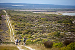 Renosterveld Mountain Bike Race (cape Town, South Africa) 2010