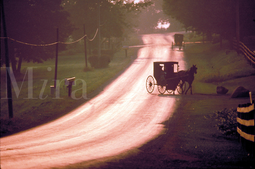 At sunset Amish buggies travel along a rural road in Holmes County, Ohio. Amish. Kidron Ohio United States Rural road.