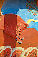 Arthur Evans reconstruction of A Bull relief fresco  of the Nouth Propylaeum,  Knossos Minoan archaeological site, Crete