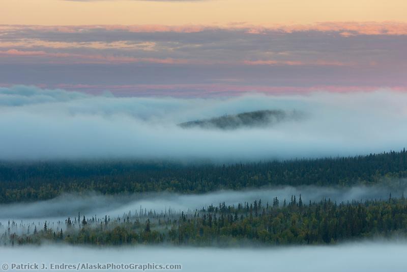 Morning fog rolls over the boreal forested hill surrounding Fairbanks, Alaska.