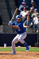 Toronto Blue Jays Ruben Tejada (33) bats during a Spring Training game against the New York Yankees on February 22, 2020 at the George M. Steinbrenner Field in Tampa, Florida.  (Mike Janes/Four Seam Images)