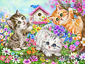 Kayomi, CUTE ANIMALS, LUSTIGE TIERE, ANIMALITOS DIVERTIDOS, paintings+++++,USKH332,#ac#, EVERYDAY ,cat,cats