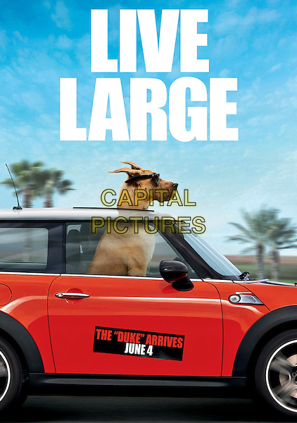 ONE SHEET POSTER ART.in Marmaduke (2010).*Filmstill - Editorial Use Only*.CAP/FB.Supplied by Capital Pictures.