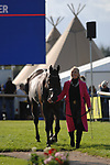 Stamford, Lincolnshire, United Kingdom, 4th September 2019, Emma Hyslop-Webb (GB) & Pennlands Douglas during the 1st Horse Inspection of the 2019 Land Rover Burghley Horse Trials, Credit: Jonathan Clarke/JPC Images