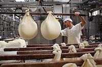 Fiorenzuola: lavorazione della produzione del Grana Padano nell'azienda Colla...Fiorenzuoal: man works for the production of Grana Padano in the farm Colla