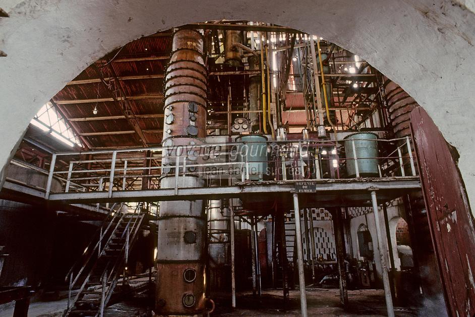 France/DOM/Martinique/Distillerie du Simon: Colonnes à distiller
