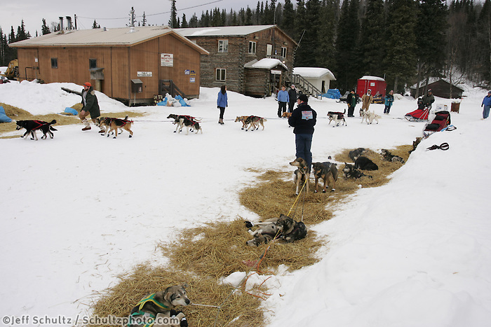 Mike Williams mushes through as Aaron Burmeister's team takes his mandatory 8 hour layover on the Yukon River at the Anvik checkpoint.  2005 Iditarod Trail Sled Dog Race.