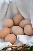 Stock Photos of Organic Eggs