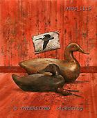 GIORDANO, REALISTIC ANIMALS, REALISTISCHE TIERE, ANIMALES REALISTICOS, paintings+++++,USGI1119,#A# ducks