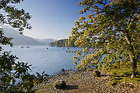 Shoreline of Lake Ullswater, Lake District, England, United Kingdom