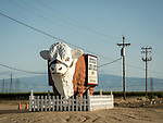 Large fiberglass Hereford bull sign for the Buttonwillow Land and Cattle Company along SR 58, Buttonwillow, Calif.