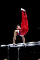 2013 Worlds Artistic Gymnastics Championships