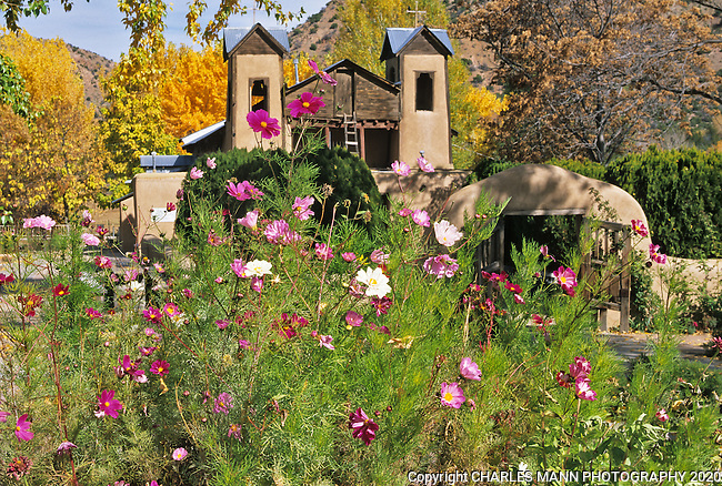A view of the Santurio de Chimayo, often called the Lourdes of America because of the belief in it's healing powers, is complimented in summer by the red, pink andwhite flowers of a blooming cosmos.