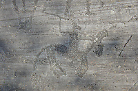 Petroglyph, rock carving, of a warrior on horseback with a quadrangle ax and shiled carved by the ancient Camuni people in the iron age between  900-1200 BC. Rock 26-27, Foppi di Nadro, Riserva Naturale Incisioni Rupestri di Ceto, Cimbergo e Paspardo, Capo di Ponti, Valcamonica (Val Camonica), Lombardy plain, Italy