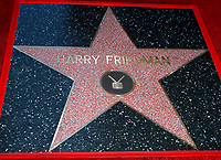 LOS ANGELES - NOV 24:  Harry Friedman star at the Harry Friedman Star Ceremony on the Hollywood Walk of Fame on November 24, 2019 in Los Angeles, CA