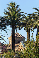 Europe/France/Provence-Alpes-Côte d'Azur/Alpes-Maritimes/Cannes: îIes de Lérins, île de Saint-Honorat : Abbaye de Saint Honorat // Europe/France/Provence-Alpes-Côte d'Azur/Alpes-Maritimes/Cannes:  Lerins island of Saint Honorat