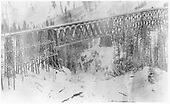 RGS Bridge 45-A viewed from the site of the original Ophir depot following its destruction by avalanche.<br /> RGS  Ophir Loop, CO  2/20 ? 1/8/1897