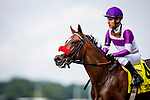 JUNE 06: Fore Left with Mario Gutierrez wins the Tremont Stakes at Belmont Park in Elmont, New York on June 06, 2019. Evers/Eclipse Sportswire/CSM