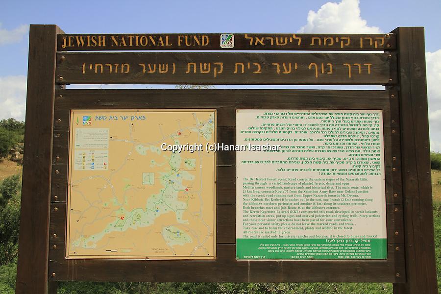 Israel, Lower Galilee, Bet Keshet forest