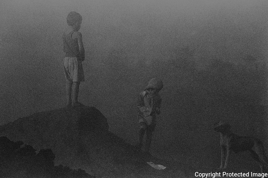 Charcoal production in Brazil. Parents do not have anyone to watch their children and carry them to the work place. They play around the piles of wood and breathe little particles of charcoal causing serious respiratory diseases. Carvomax Company; City: Ribas do Rio Pardo; State: Mato Grosso do Sul; Brazil.