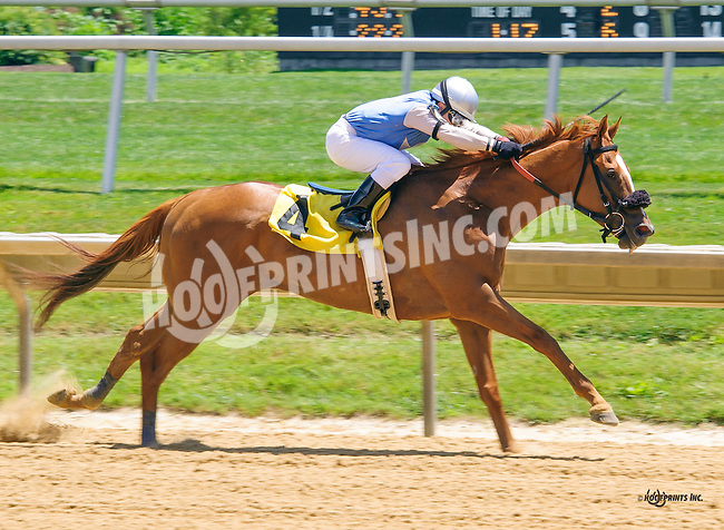 Charlesbrecknridge winning at Delaware Park on 7/2/16  Earning trainer Jamie Ness his 2500th career win!