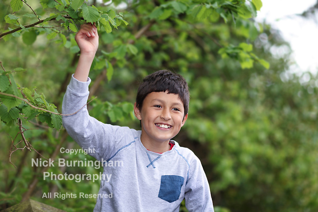 Young boy on a fence in a woodland - shallow depth of field, copy-space