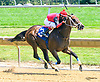 Jazz Man winning at Delaware Park on 7/19/17