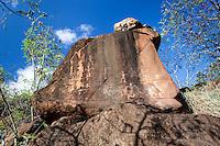 Hawaiian petroglyphs on a large cliff boulder, Waipahu, Oahu