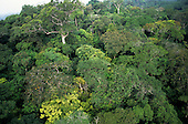 Makande, Gabon. Aerial view over the canopy of the rainforest.