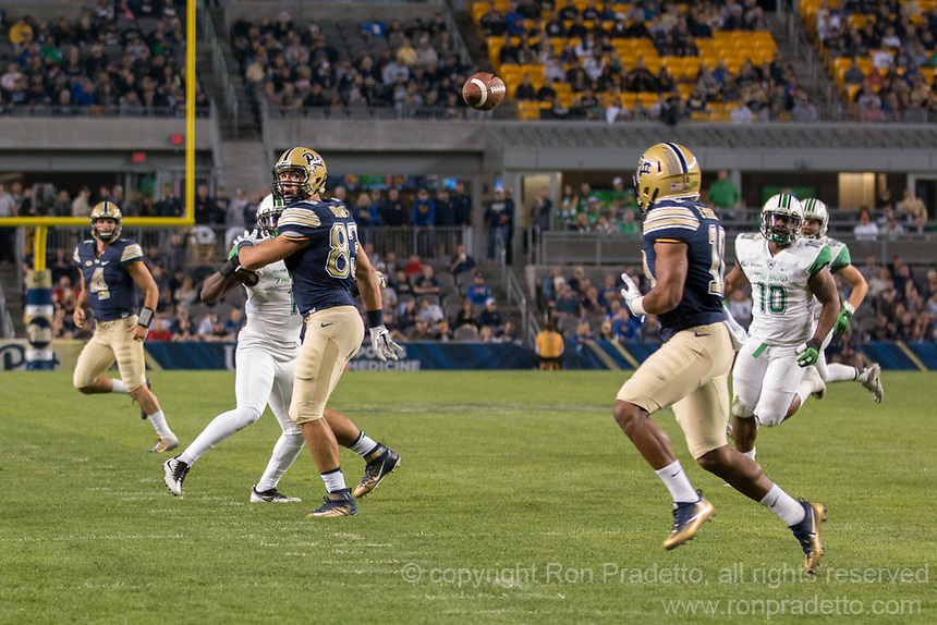 Pitt wide receiver Quadree Henderson (10) is about to catch a pass from quarterback Nathan Peterman (4). The Pitt Panthers defeated the Marshall Thundering Herd 43-27 on October 1, 2016 at Heinz Field in Pittsburgh, Pennsylvania.