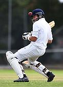 Cricket - Stoke/Nayland v Wanderers/Mot