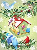 Randy, CHRISTMAS SYMBOLS, WEIHNACHTEN SYMBOLE, NAVIDAD SÍMBOLOS, paintings+++++Evergreen-Birds-print,USRW68,#xx#