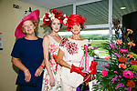 Enjoying  Ladies Day at Listowel Summer Race meeting on Sunday were Eileen Kennedy, Niomi Kelleher, Mary Kelleher, killorglin