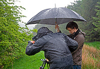 Film cameraman and director,  holding umbrella, filming wildlife in the rain, Whitewell, Lancashire, England. Camera has wet weather protective cover.....Copyright..John Eveson,.Dinkling Green Farm,.Whitewell,.Clitheroe,.Lancashire..BB7 3BN.Tel. 01995 61280.Mobile 07973 482705.j.r.eveson@btinternet.com.www.johneveson.com