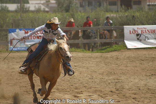 YOUNG FEMALE RIDES the BARREL RACE