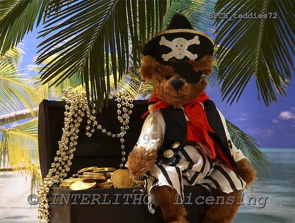 Xavier, CUTE ANIMALS, teddies, photos, SPCHTEDDIES72,#ac#