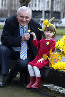 22/3/07.An Taoiseach Bertie Ahern at the launch Irish Cancer Societys 2007 Daffodil Day campaign which takes place on Friday 23rd March..Pic Collins Photos
