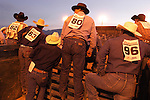 Cowboys lined-up behind the chutes to watch the bull riding Minden Ranch Rodeo at the county fairgrounds in Gardnerville, Nevada.