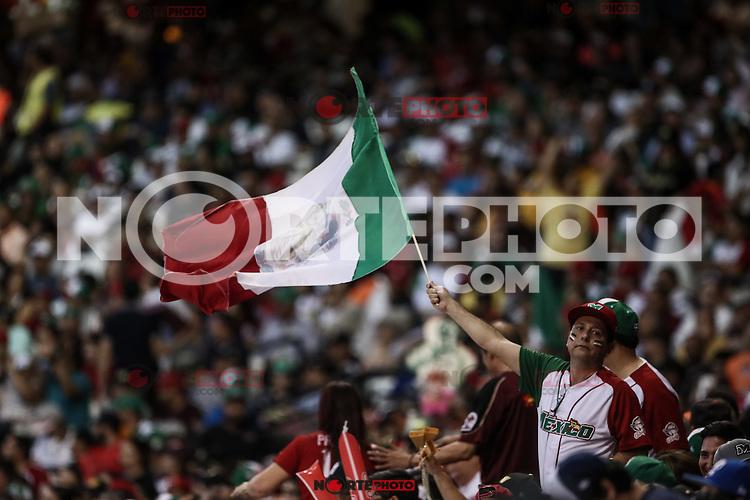 Un aficionado al beisbol ondea la badera de Mexico , durante el segundo partido semifinal de la Serie del Caribe en el nuevo Estadio de  los Tomateros en Culiacan, Mexico, Lunes 6 Feb 2017. Foto: AP/Luis Gutierrez