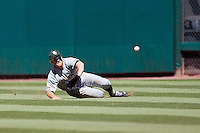 Baylor Bears outfielder Logan Brown #16 dives for a ball in the outfield during the NCAA baseball game against the California Golden Bears on March 1st, 2013 at Minute Maid Park in Houston, Texas. Baylor defeated Cal 9-0. (Andrew Woolley/Four Seam Images).
