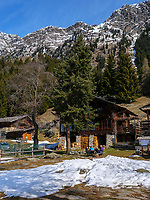 Leiteralm bei Algund-Lagundo, Provinz Bozen &ndash; S&uuml;dtirol, Italien<br /> Leiter alp near Algund-Lagundo, province Bozen-South Tyrol, Italy
