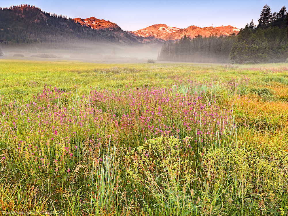 Summer Sunrise, Squaw Valley