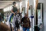 LOUISVILLE, KENTUCKY - APRIL 28: Tacitus, trained by William Mott, walks shed row before exercising in preparation for the Kentucky Derby at Churchill Downs in Louisville, Kentucky on April 28, 2019. Scott Serio/Eclipse Sportswire/CSM