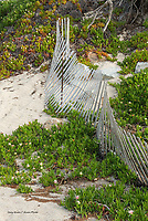 Old fence on beach