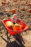 USA, Oregon, Bend, a young girl sits in the wheelbarrow with her chosen pumpkins at the annual pumpkin patch located in Terrebone near Smith Rock State Park