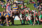 Referee Simon Brown calls for the 2 forward packs to engage at scrumtime. Counties Manukau Premier Club Rugby final between Patumahoe & Waiuku played at Bayers Growers Stadium Pukekohe on Saturday August 8th 2009. Patumahoe won 11 - 9 after leading 11 - 6 at halftime.