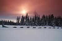 Dee Dee Jonrowe 1994 Iditarod near willow restart