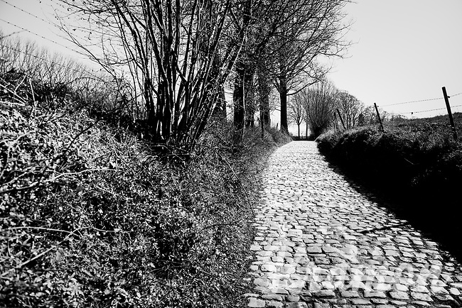 Empty roads up the infamous Koppenberg on the Ronde van Vlaanderen race day<br /> <br /> Due to the international pandemic caused by the coronavirus COVID-19, the 104th Ronde van Vlaanderen, like all other Spring Classics in 2020, was canceled which left the race roads (as the rest of the country in lockdown) eerily empty on (what was the original) race day…<br /> <br /> (was supposed to be a) 1 day race from Antwerp to Oudenaarde (257km)<br /> <br /> ©kramon