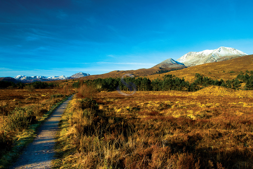 Beinn Eighe, Beinn Eighe National Nature Reserve Ross & Cromarty, Northwest Highlands